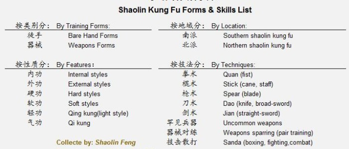 Shaolin Kung fu Techniques and Training in China - Learn