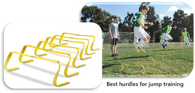 Best Reviewed Agility Hurdles for Kung Fu Training